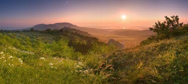 Wine and Sun under Palava Hills